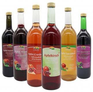 Bleichhof Apfelmischsäfte mit Beeren Probepaket-Apfel-Sanddornsaft, Apfel-Aroniasaft, Apfel-Cranberrysaft, Apfel-Johannisbeersaft, Apfel-Holundersaft, Apfel-Kirschsaft(6x0, 72L)
