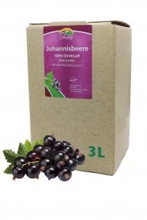 Bleichhof Schwarzer Johannisbeersaft - 100% Direktsaft, Bag-in-Box (1x 3l)