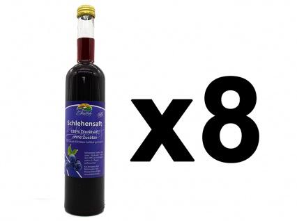 Schlehensaft vom Bleichhof (8x 0, 47l) vegan