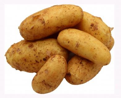 Bleichhof 5kg Ernte 2021 Kartoffeln aus der Pfalz - Sorte: Annabelle festkochend Salatkartoffel