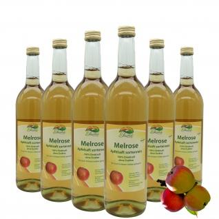 Bleichhof Apfelsaft Melrose -- 100% Direktsaft, sortenrein, 6er Pack (6 x 0, 72l)