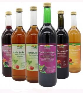 Bleichhof Detox Saftkur - Apfelsaft-Aroniasaft, Apfel-Johannisbeersaft, 2x Apfelsaft mit Selleriesaft, Apfel-Sanddornsaft, Apfel-Holundersaft (6x0, 72L)