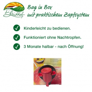 Apfel-Karotten-Saft Bleichhof, 100% Direktsaft ohne Zusätze - Bag-in-Box Verpackung (2x 5L Saftbox) vegan - Vorschau 3