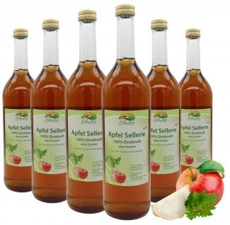 Bleichhof Apfelsaft mit Selleriesaft-100% Direktsaft, OHNE Zuckerzusatz(6x0, 72l)