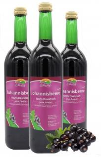 Bleichhof Schwarzer Johannisbeersaft - 100% Direktsaft, vegan (3x 0, 72l)