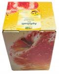 Apfelsaft klar vom Bleichhof, 100% Direktsaft ohne Zusätze, Bag-in-Box Zapfsystem (5L Saftbox) vegan