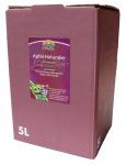 Apfelholundersaft vom Bleichhof, 100% Direktsaft ohne Zusätze, Bag-in-Box Verpackung (1x 5L Saftbox)