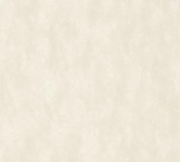 Design Uni Vlies Tapete feine Struktur grau beige meliert Cozz 36299-1