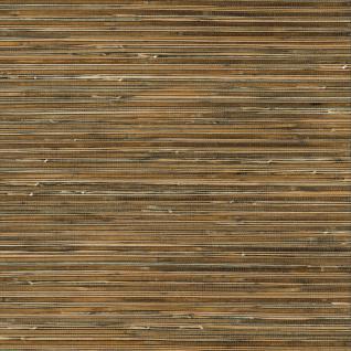 Vlies Tapete Japan Gras Optik Sisal Optik Naturtapeten SR210304 Beige Braun