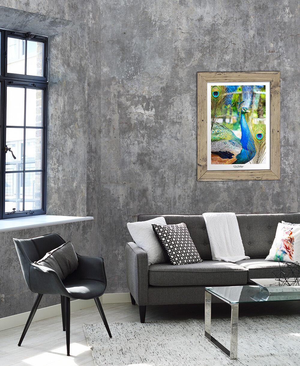 Vlies Foto Tapete Steinwand Beton Mauer Loft Grau Verwittert Wandbild  200x300cm