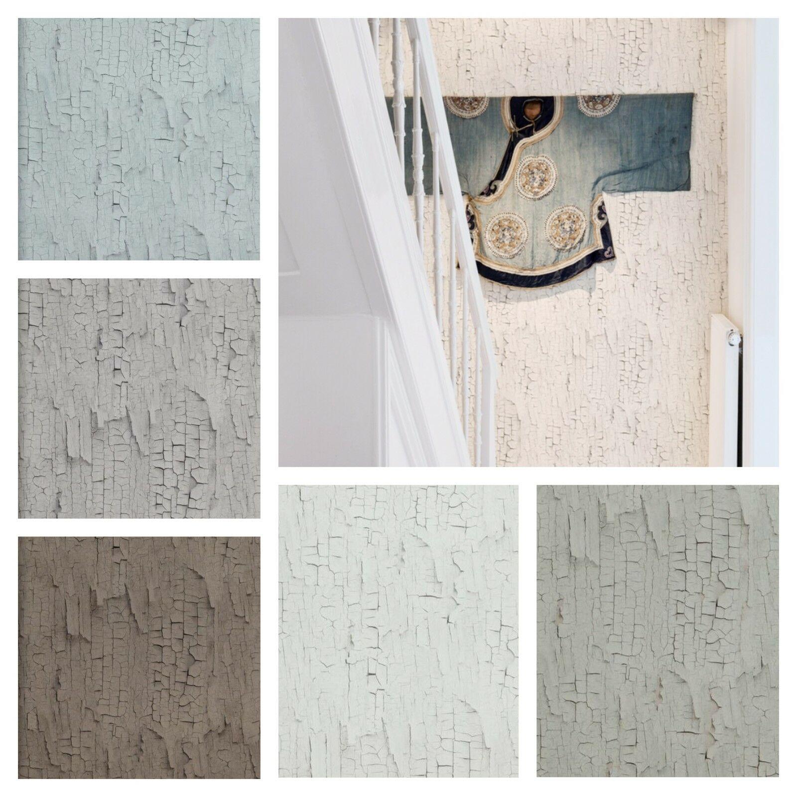 vlies tapete holz rindenmuster creme wei kiesel grau taupe braun pastell blau kaufen bei. Black Bedroom Furniture Sets. Home Design Ideas