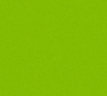 Vliestapete Kinder Uni grün einfarbig Little Stars 35834-2