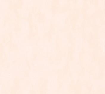 Design Uni Vliestapete feine Struktur Apricot Pfirsich Rosa meliert Cozz 36299-4