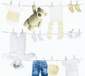 Kinder Vliestapete Wäscheleine Teddy Bär Kleidung Söckchen weiß beige 35844-1