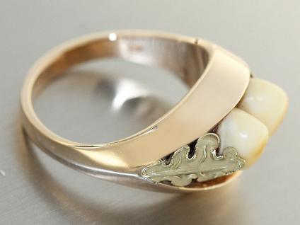 Ring in 14 kt Gold (585/000) mit 2 Grandln (Hirschzähne), Tracht Ring Gold 585