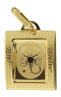 Sternzeichen Skorpion Anhänger echt Gold 333 schöner Goldanhänger Skorpion