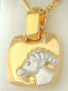 Sternzeichen Steinbock Goldkette und Goldanhänger vergoldet Panzerkette Gold