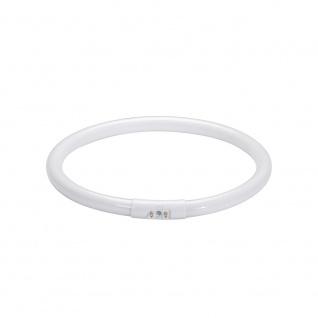 Paulmann Leuchtstofflampe Ringform T5 22W 2GX13 225mm Warmweiß 88448