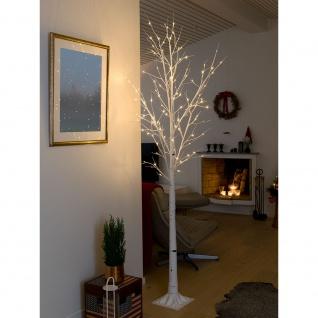 LED Birke groß weiß 120 Warmweiße Dioden 24V Innentrafo