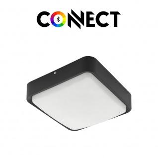 Connect LED Aussenwandleuchte 1400lm IP44 Warmweiß