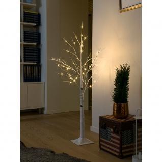 LED Birke klein weiß 48 Warmweiße Dioden 24V Innentrafo