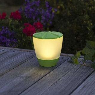 Solar LED Leuchte Assisi Turner Grün Solar Gartenlampe Gartenleuchte