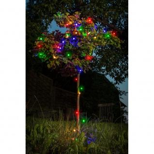 LED Globelichterkette runde Dioden mit 8 Funktionen 160 bunte Dioden 24V Außentrafo