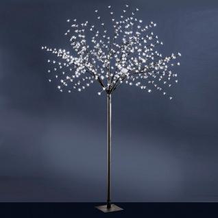 LeuchtenDirekt 86130-18 LED-Baum 250cm 600 x 0, 03W 12000K IP44 Schwarz
