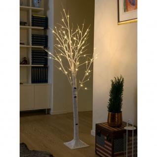 LED Birke mittel weiß 72 Warmweiße Dioden 24V Innentrafo