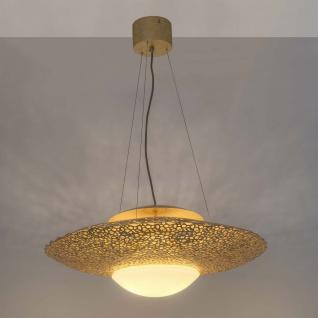 holl nder 300 k 1448 pendelleuchte 2 flammig utopistico eisen glas gold kaufen bei licht. Black Bedroom Furniture Sets. Home Design Ideas