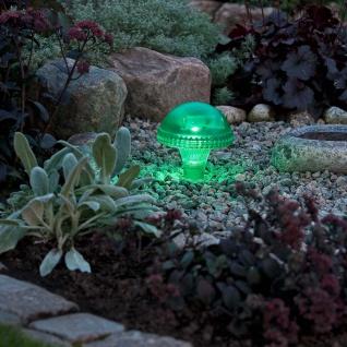 Assisi Pilz Solar LED Leuchte Grün Solar Gartenlampe Gartenleuchte