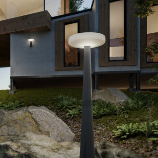Licht-Trend LED-Solar-Mastleuchte Paquita Grau