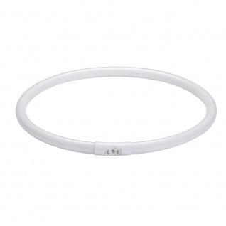 Paulmann Leuchtstofflampe Ringform T5 55W 2GX13 300mm Warmweiß 88446