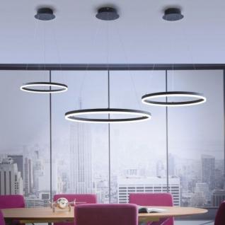 Licht-Trend Ring L LED-Hängeleuchte dimmbar über Schalter Ø 80cm Anthrazit Ringleuchte
