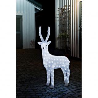 LED Acryl Rentier weiblich 160 Kaltweiße Dioden 24V Außentrafo