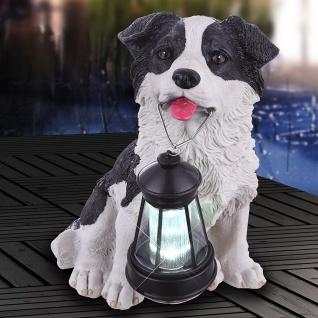 Süßer Hund mit Laterne LED Solarleuchte 25cm Solar Gartenlampe Gartenleuchte