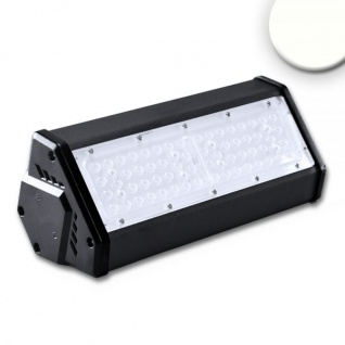 Pro-Light LED Hallenleuchte LN 50W 30°*70° IP65 1-10V dimmbar neutralweiß 113737
