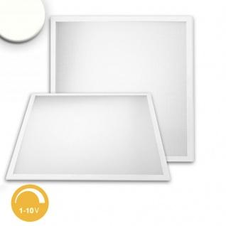 LED Panel Professional Line 600 Neutralweiss 1-10 V dimmbar 4100lm Weiss