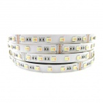 24 W/m RGB + CCT 5 in 1 LED 24V 5m LED-Strip IP20