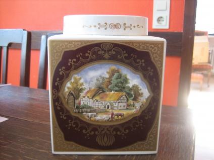 prächtiger Tea Caddy Teedose Teeurne Royal Cauldon für Twinings wunderschön