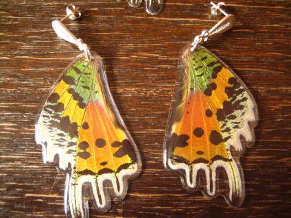 Schätze der Natur Ohrringe Schmetterlingsflügel F 925er Silber Eco Friendly