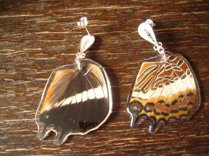 Schätze der Natur Ohrringe Schmetterlingsflügel D 925er Silber Eco Friendly - Vorschau 2