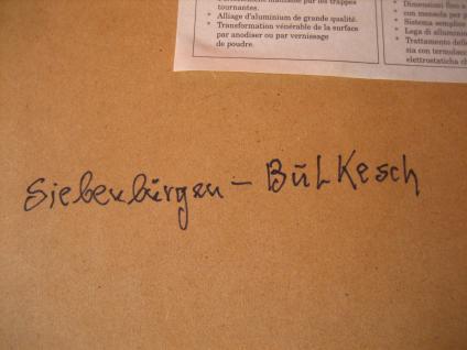 prächtig polychrom coloriertes Blatt Bild Siebenbürgener Tracht Siebenbürgenl - Vorschau 4