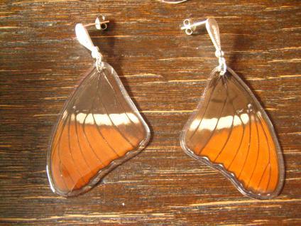 Schätze der Natur Ohrringe Schmetterlingsflügel E 925er Silber Eco Friendly
