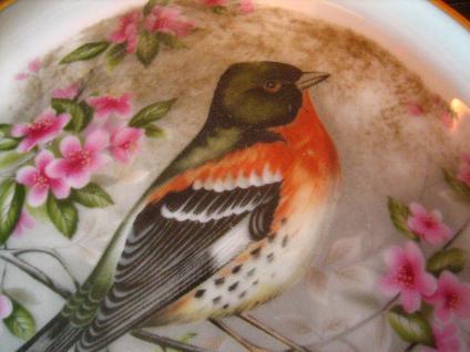 dekoratives Wandbild Wandplakette Kaiser Porzellan Buchfink Vogel Singvogel - Vorschau 2