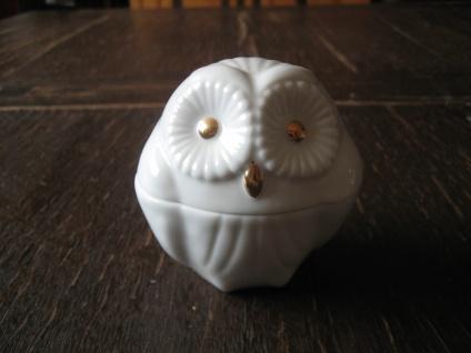 reizende Porzellan Dose Döschen Schatulle Eule Uhu Käutzchen Bone China weiß