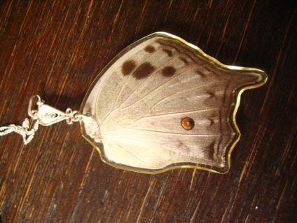 Schatz der Natur Anhänger Schmetterlingsflügel B 925er Silber Kette Eco Friendly