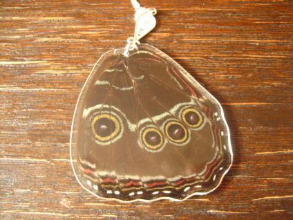 Schatz der Natur Anhänger Schmetterlingsflügel C 925er Silber Kette Eco Friendly - Vorschau 2