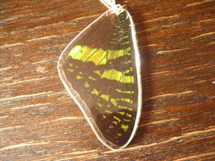 Schatz der Natur Anhänger Schmetterlingsflügel H 925er Silber Kette Eco Friendly - Vorschau 2