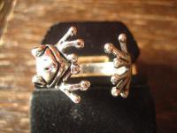 reizender Froschring Frosch Kröte Unke Ring 925er Silber neu plastisch Krafttier